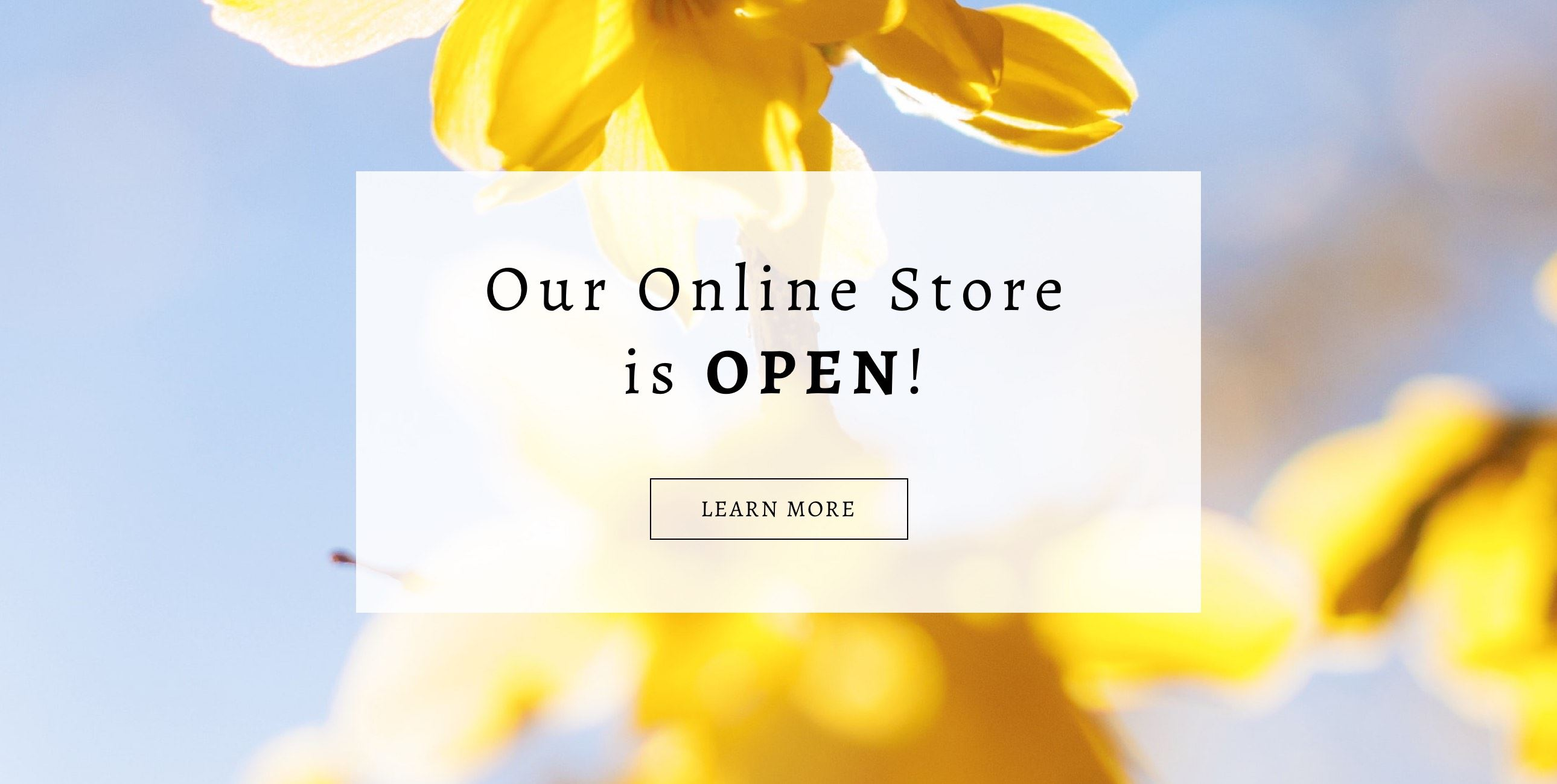 Now Open banner for Cecile Boutique with yellow flower background
