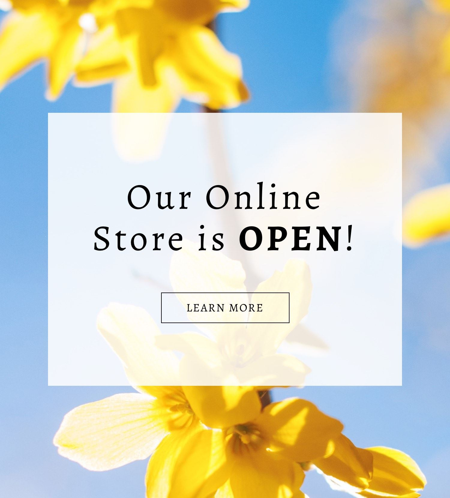 Now Open banner for Cecile Boutique with yellow flower background shown on mobile device